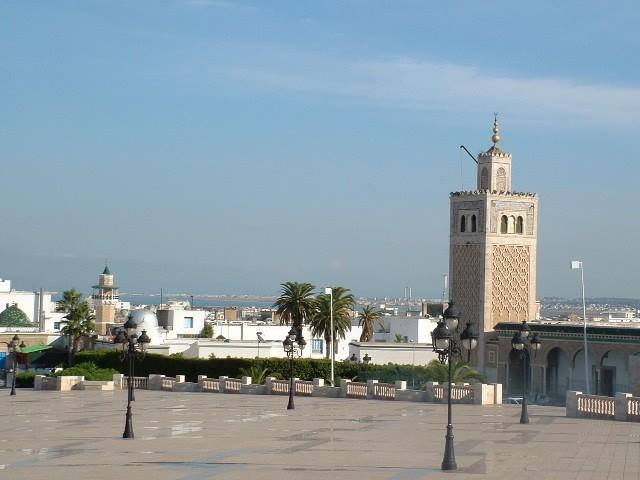 تونس وضواحيها